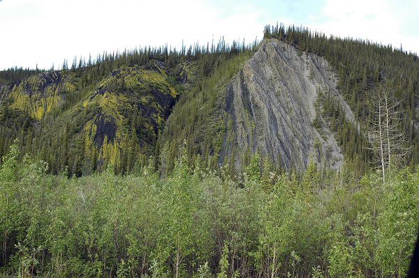 trees mountains dempster highway